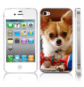Image of   Chihuahua Sweet 4/4S Cover
